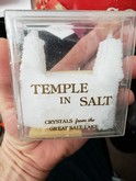Temple in Salt: Crystals from the Great Salt Lake
